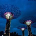 Singapore 🇸🇬